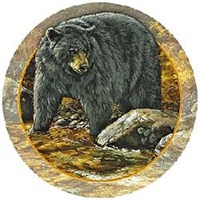 Black Bear Coasters