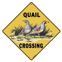 Quail Sign Best Price