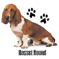 Basset Hound T-Shirt - Styling With Paws