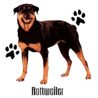 Rottweiler T-Shirt - Styling With Paws