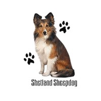 Shetland Sheepdog T-Shirt - Styling With Paws