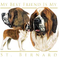 12732 Shirts: St. Bernard