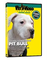 Pit Bull Terrier Video