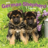 2012 German Shepherd Puppies Calendar