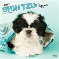 Shih Tzu Puppies 2017 Calendar