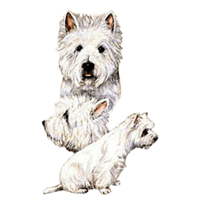 Westie T-Shirt - Best Friends