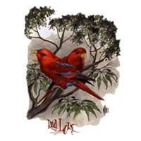 Red Lory Parrot Shirts