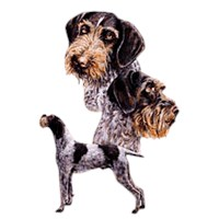 German Wirehaired Pointer Shirts