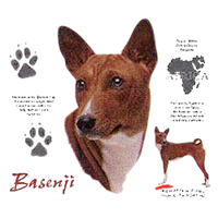 Basenji T-Shirt - History Collection