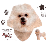Bichon Frise T-Shirt - History Collection