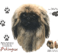 Pekingese T-Shirt - History Collection