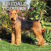 2012 Airedale Terriers Calendar Best Price