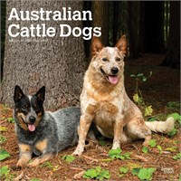 2012 Australian Cattle Dogs Calendar