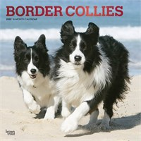 2012 Border Collies Calendar