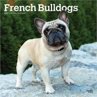 French Bulldog 2017 Calendar