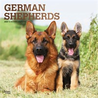 2012 German Shepherds Calendar
