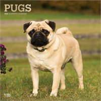 4287 2012 Pugs Calendar