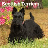 4296 2012 Scottish Terriers Calendar