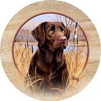 Chocolate Lab Drink Coasters