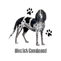 Bluetick Coonhound Shirts
