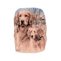 Golden Retriever Shirts