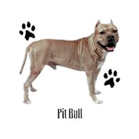 Pit Bull Terrier Profile T Shirt