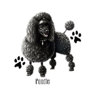 Black Poodle Shirts