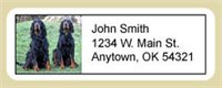 Gordon Setter Address Labels