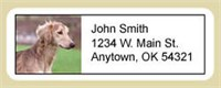 5250 1832 Saluki Address Labels