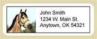 Buckskin Horse Address Labels