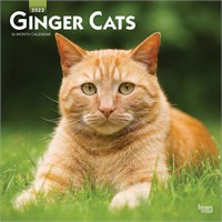 Ginger Cats Calendar 2015