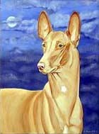 Pharaoh Hound Flag