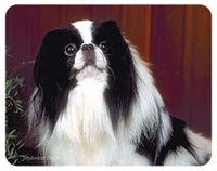 Japanese Chin Coasters