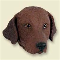 Chesapeake Bay Retriever Magnet