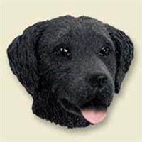 Flat-Coated Retriever Magnet