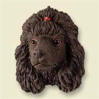 Chocolate Poodle Magnet