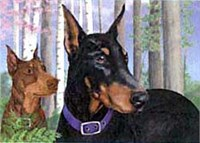 Doberman Pinscher Floormat