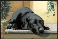 Black Lab Floor mat