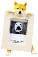 Shiba Inu Picture Frame Best Price