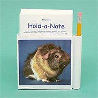 Hold-a-Note: Guinea Pig