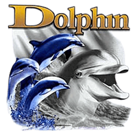 Dolphin T-Shirt - Bright and Colorful