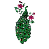 Peacock T-Shirt Adults & Kids - Admidst Roses
