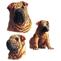 Shar Pei T-Shirt - Collage
