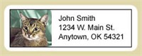 Abyssinian Cat Address Labels