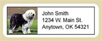 Old English Sheepdog Address Labels