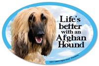 Image of Afghan Hound Car Magnet - Life's Better