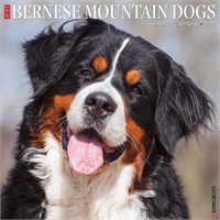 2012 Best Berners By Myrna Calendar Best Price