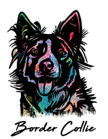 Border Collie T Shirt Colorful Abstract