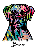 Boxer T Shirt Colorful Abstract