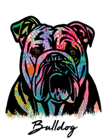 Bulldog T Shirt Colorful Abstract